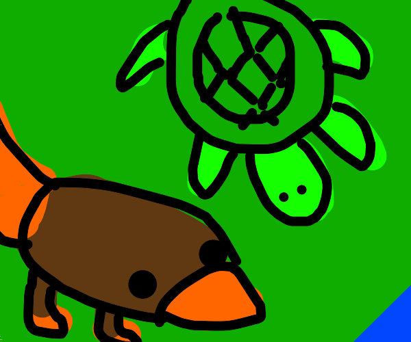 Platypus hanging out with a sea turtle