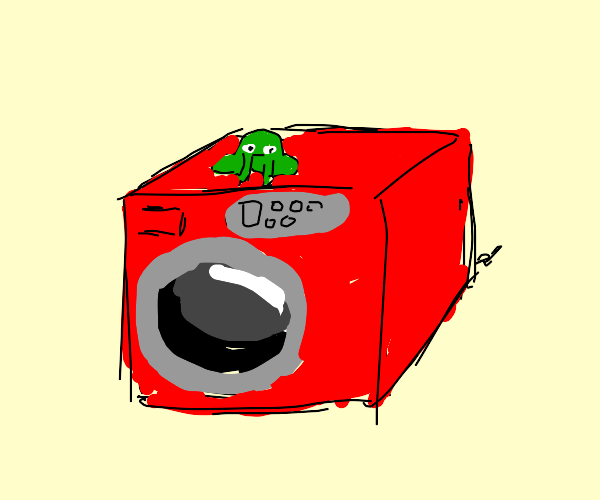 frog on washing machine