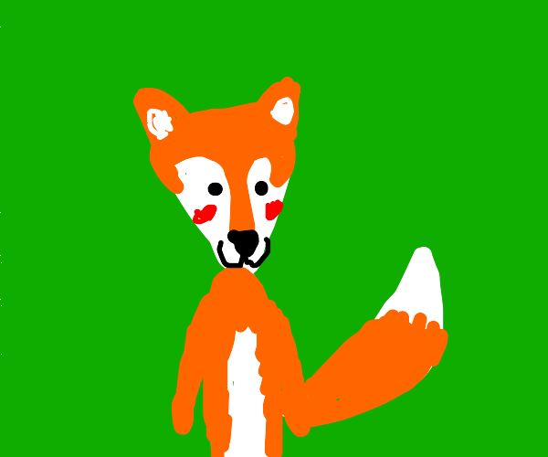 A happy fox blushing