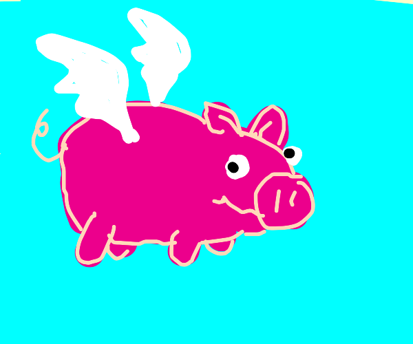 The moment that pigs actually fly