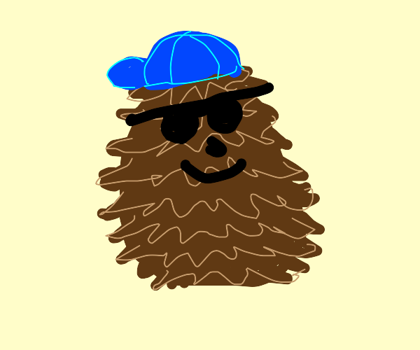 Cool pinecone with sunglasses and hat