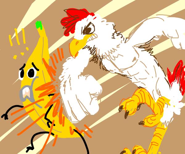 Buff chicken fights a banana