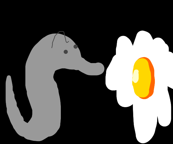 a seahorse triggering a fried egg