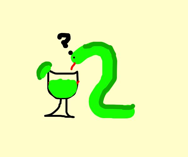 snake drinking magirita