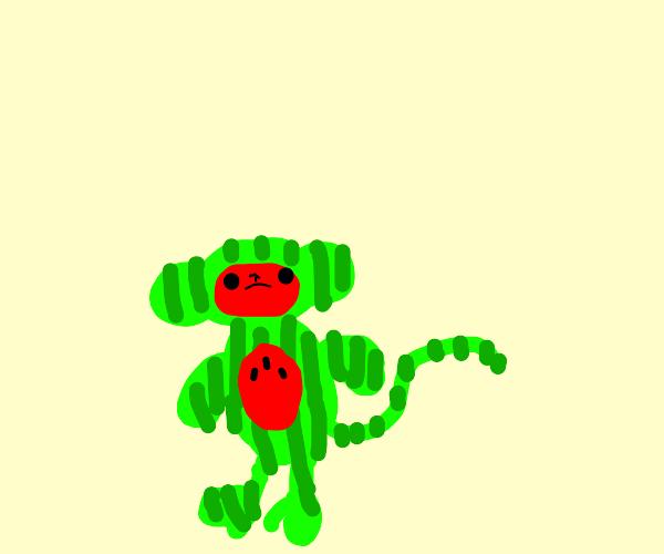 Watermelon monkey