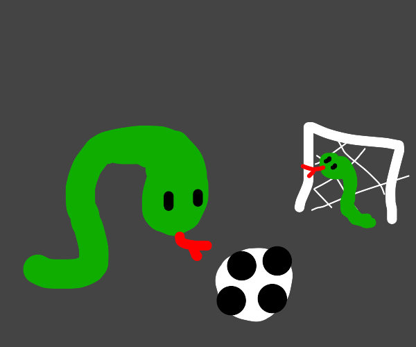 Here we observe sneks doing soccer