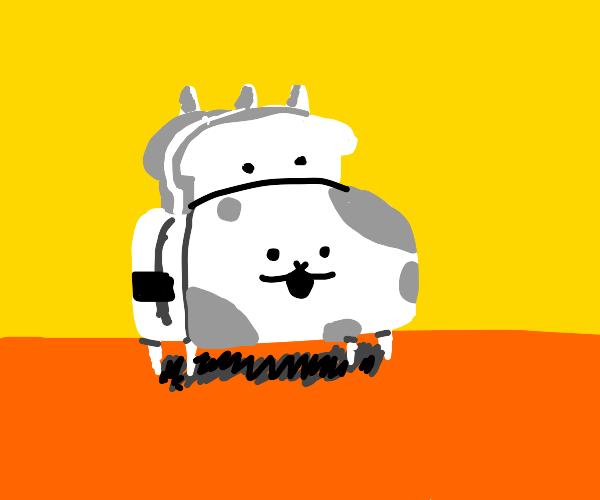 Toaster Cat
