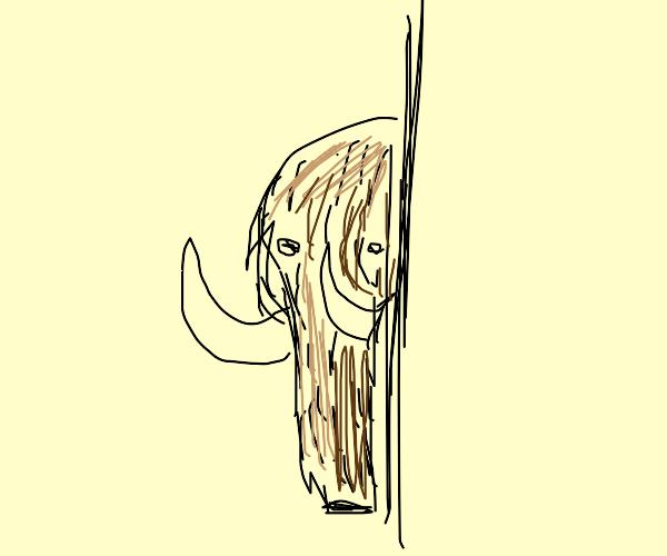 Mammoth behind a wall