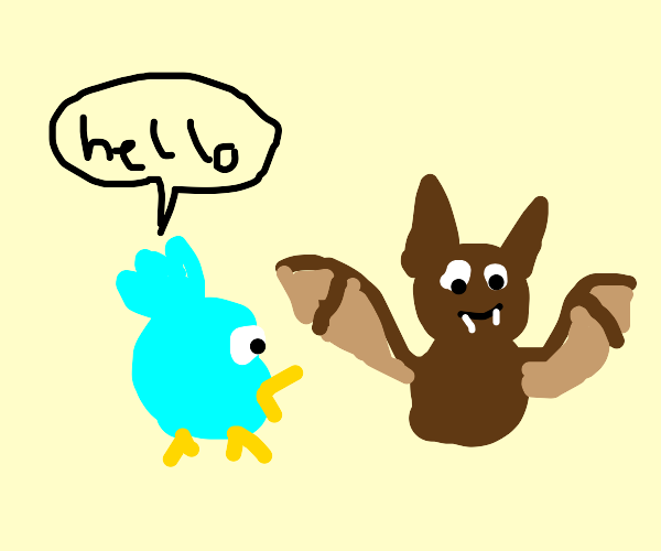 Bird meets bat in a cave, says hello