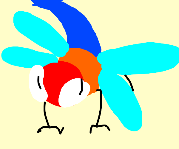 Red, orange, and blue dragonfly