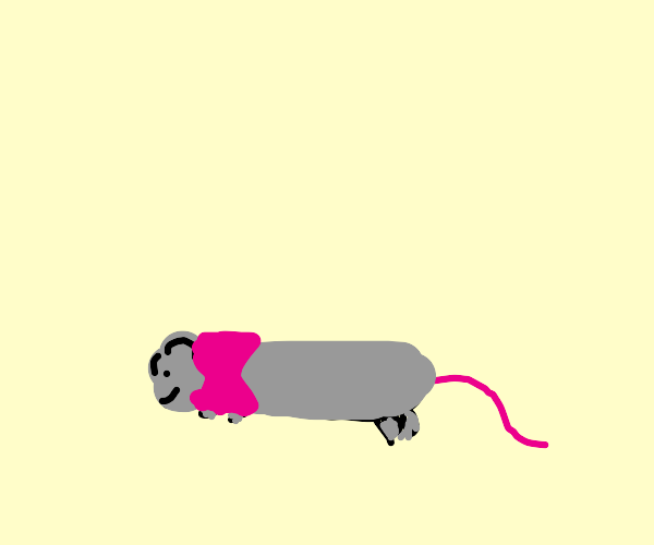 rat with a pink bow