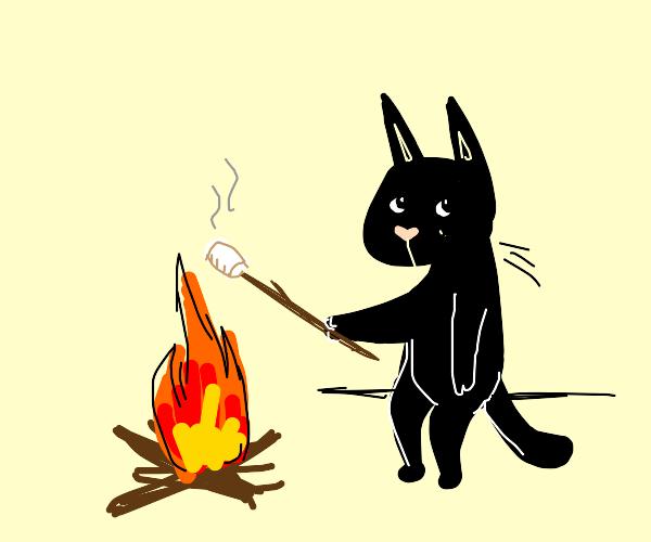 Cats roasting marshmallows