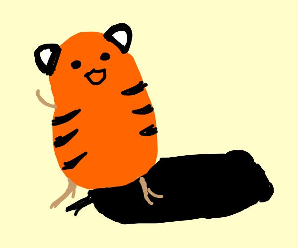 tiger potato and its shadow