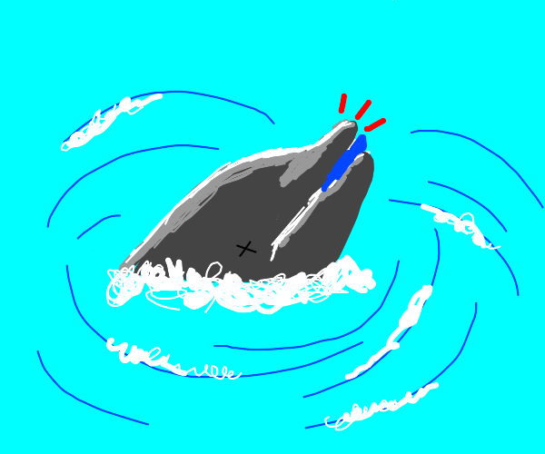 A dolphin choking on his food