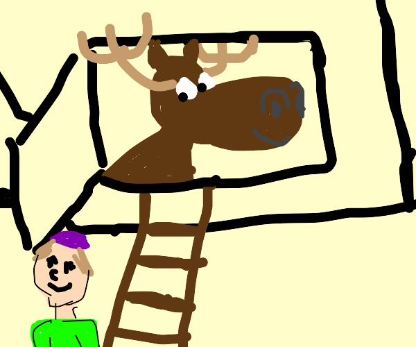 Moose looks down from attic at boy