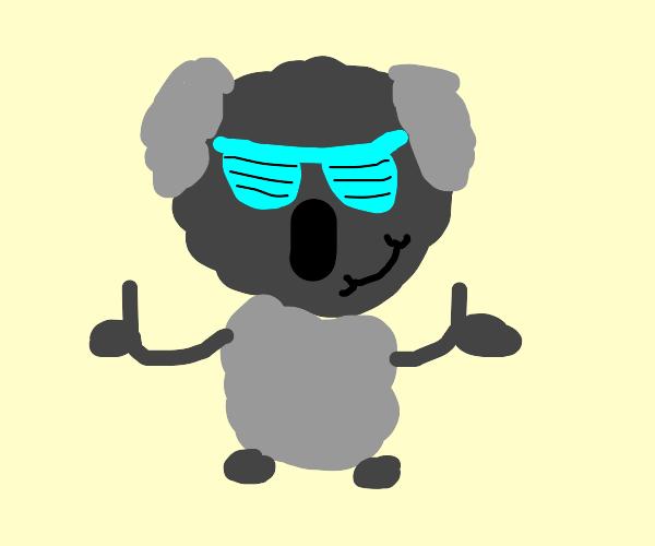 cool koala man gives two thumbs up