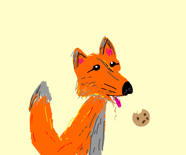 furry fox eating a cookie