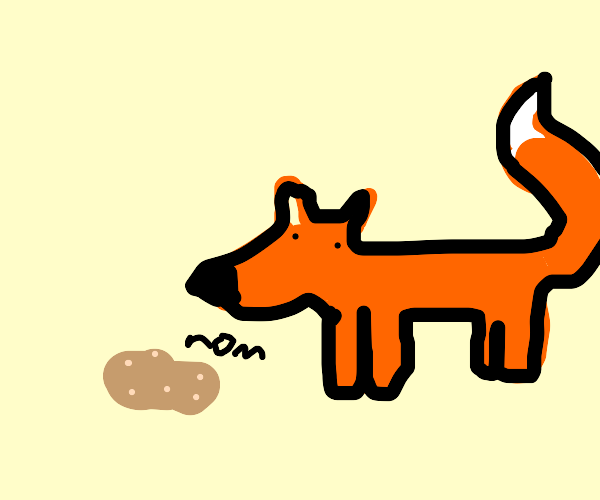 fox eats potato