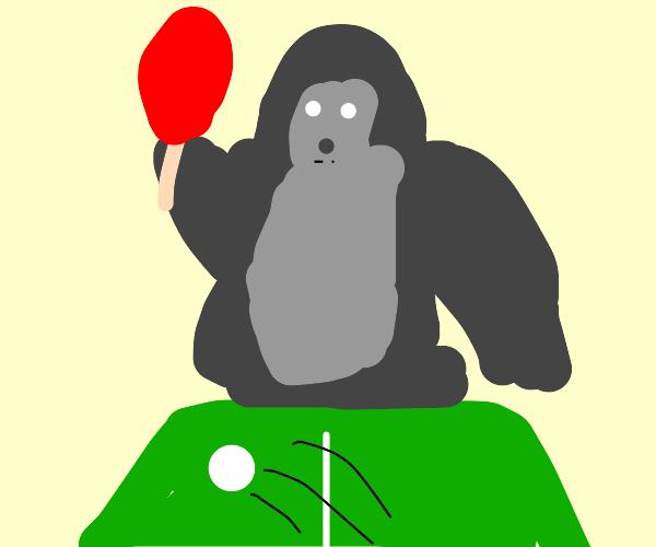 Gorilla plays Ping Pong