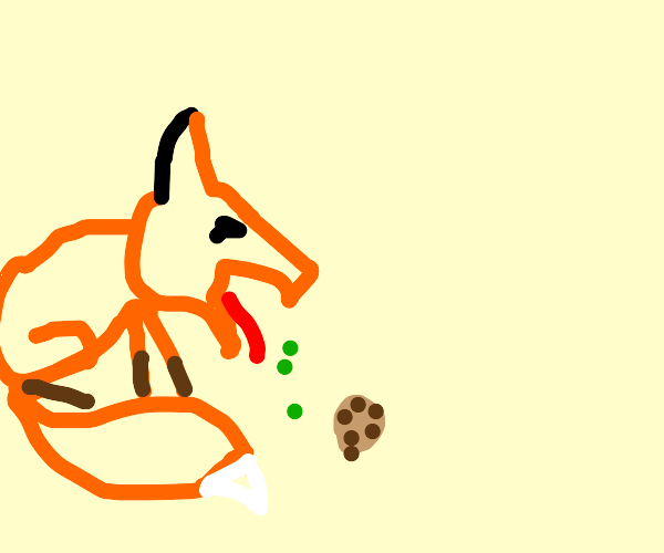 Fox puking out a cookie