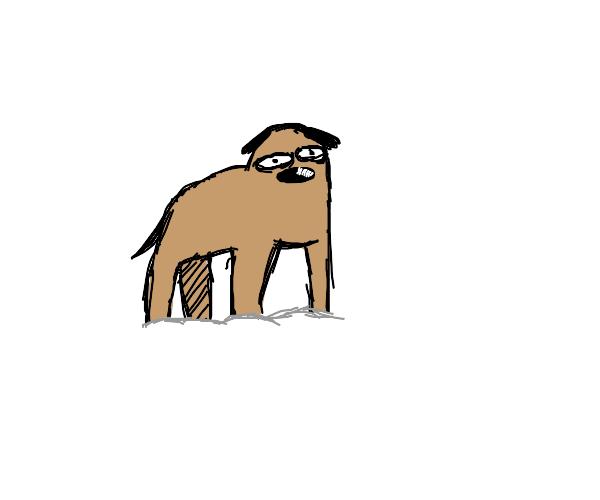 Dog going through snow