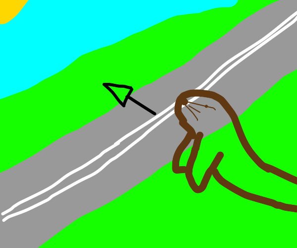 Otter jumping over the Highway