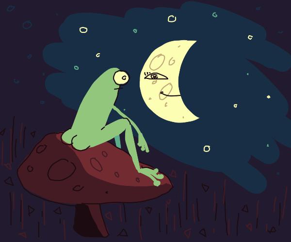 A frog on top of mushroom looking at moon