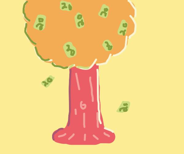 Money tree $20