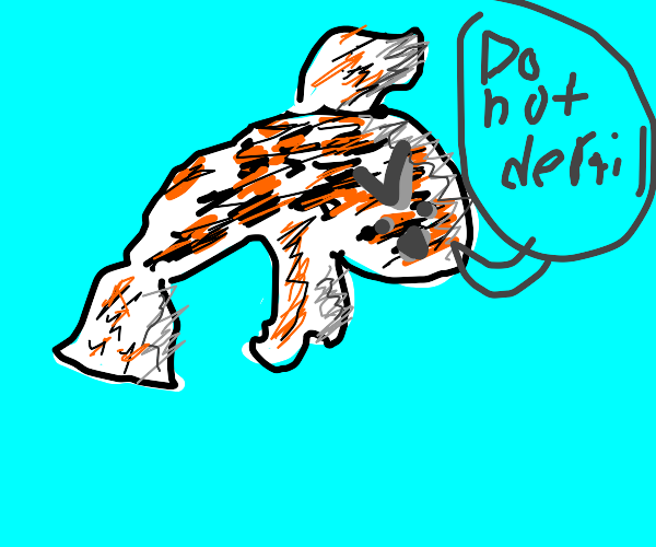 Koi fish tells you to not derail
