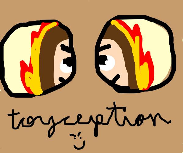 Toyception