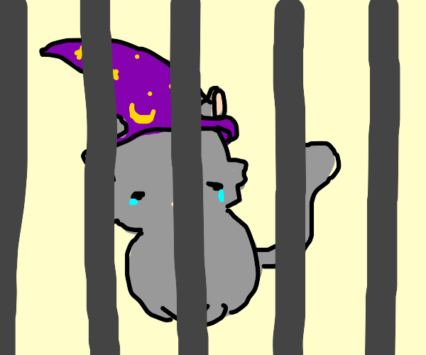 wizard cat crying in jail