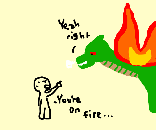 dragon refuses to accept that he's on fire