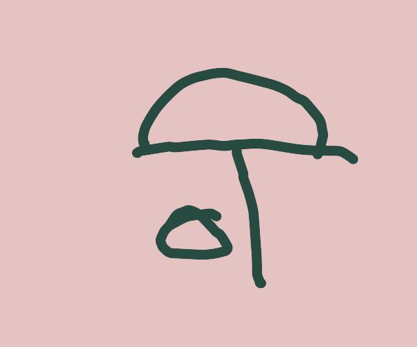 Mushroom works as umbrella for forest animal