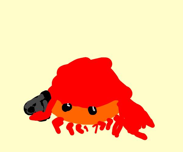 Crab with a gun