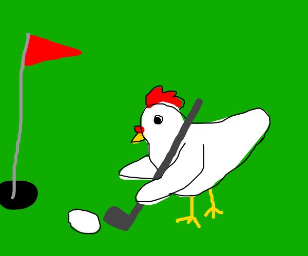 a chicken putting an egg