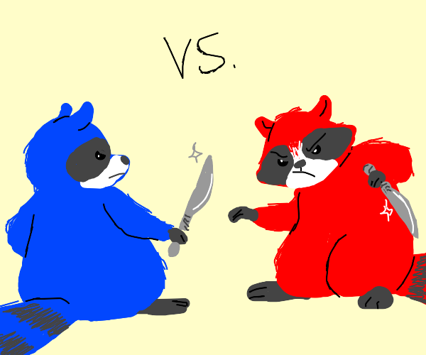 Red and Blue Raccoon Fight!