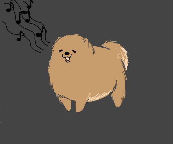 singing dog poo poo