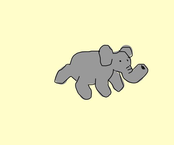 Elephant Bug