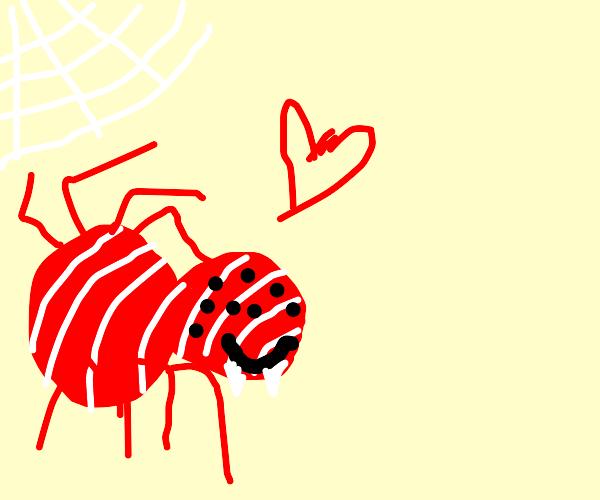 Peppermint spider friend