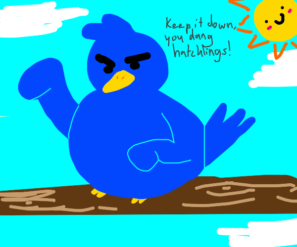 Angry bird, more annoyed than angry