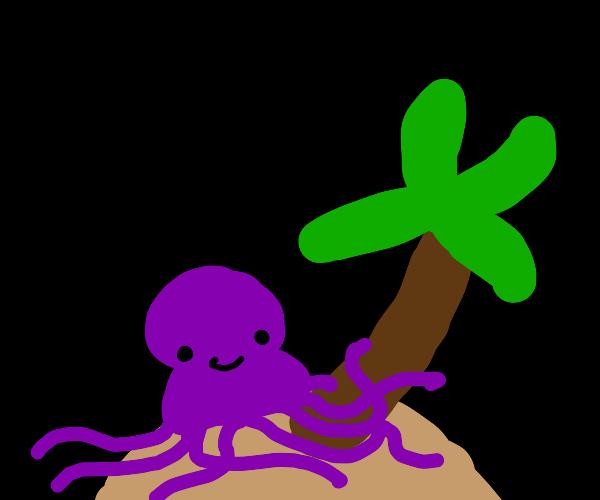 Octopus stuck on an island