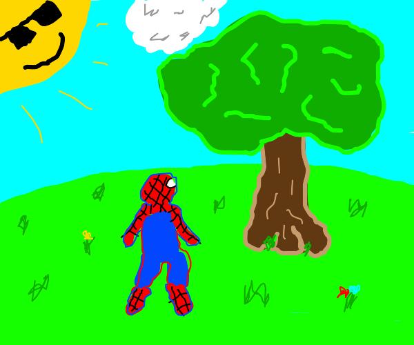 spiderman, just staring a tree