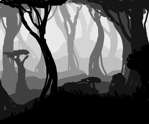 A dark foggy forest.