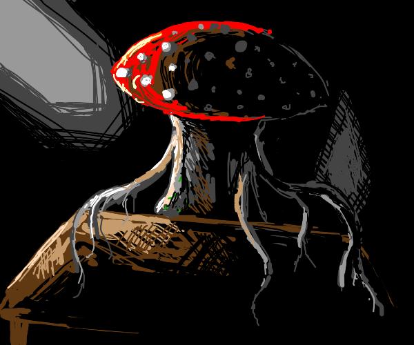 Mushroom Man at the Table