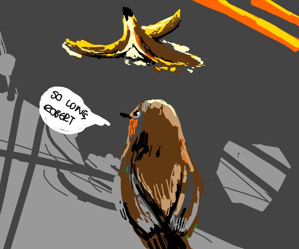 bird finds his banana friend's dead body