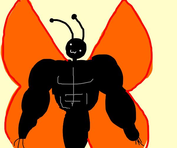 buff butterfly