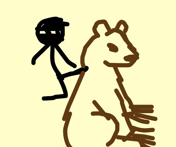 ninja kiccs a bear