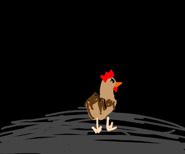 Chicken alone in the dark
