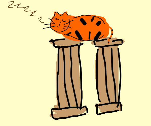cat sleeping on 2 brown pillars