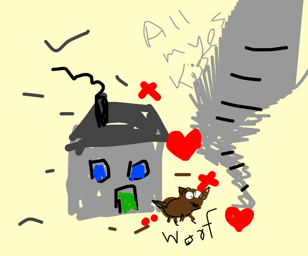 Tornado kisses houses and a dog